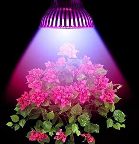 amstt E27 4 W Lámpara LED planta Planta lámpara Plantas lámpara Planta Luz Bombilla Luz Grow