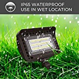 HYPERLITE 50W LED Flood Light Outdoor with Knuckle