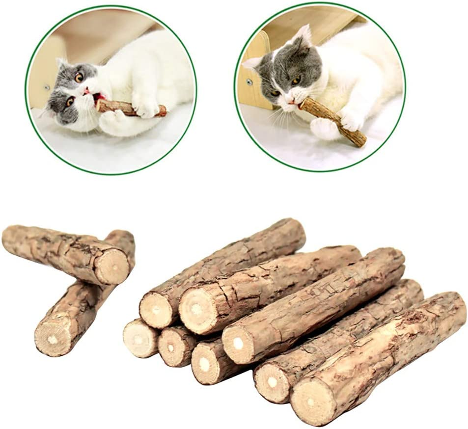 10 Pieces Cat Catnip Sticks FunDiscount Natural Matatabi Silvervine Chew Sticks for Cats Teeth Cleaning Chew Toy Dental Molar Tooth Stick Rod Kitten Kitty Catnip Alternative for Pet