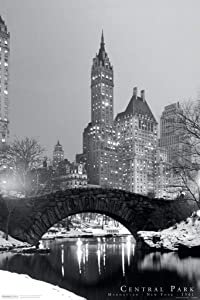 Pyramid America Central Park Winter Manhattan NYC Cool Wall Decor Art Print Poster 24x36