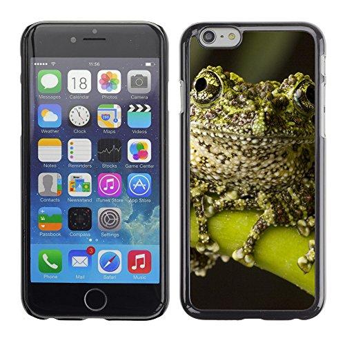 "Premio Sottile Slim Cassa Custodia Case Cover Shell // V00003654 mousse grenouille // Apple iPhone 6 6S 6G 4.7"""