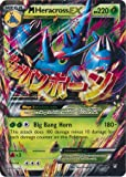 Pokemon M Heracross Ex Furious Fists 5/111