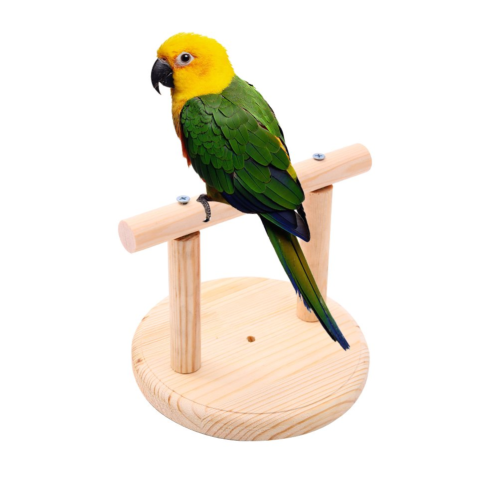 QBLEEV Portable Bird Training Perch Birdcage Stand for Small Birds Parrots Decor,Parrot Playstand Playground Fits for Concures Parakeets 6.2''x4.7'' by QBLEEV