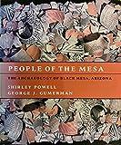 People of the Mesa: The Archaeology of Black Mesa, Arizona
