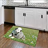 Foldable Thicken Rug Dog Maximum Absorbent Soft W34'' x H21''
