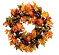 26 Inch Pre-Lit LED Fall Wreath With Lights - Maple Leaf Wreath With Pumpkins, Gourds, Pine Cones and Berries on Twig Base- Battery Operated