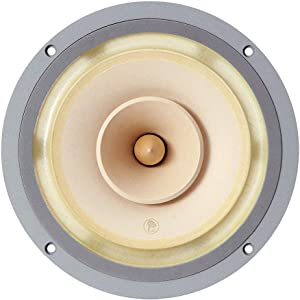 Lii Audio 8 Inch Full Range Drivers for Audiophile HiFi Open Baffle Fast-8