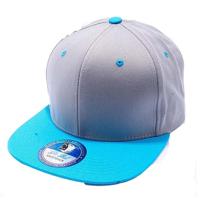 Amazon.com  Pit Bull 100% Cotton Snapback Baseball Hat Cap - Gray ... 22170c7e8512