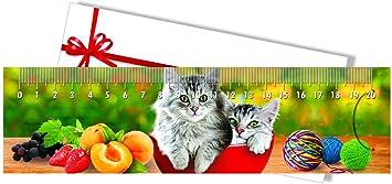 Marcapáginas - Regla regalo Gatos en la taza 3D