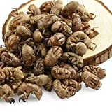 1.1 lb Wild cicada slough Chan Tui good for eyes throat relieve pain 500 Grams