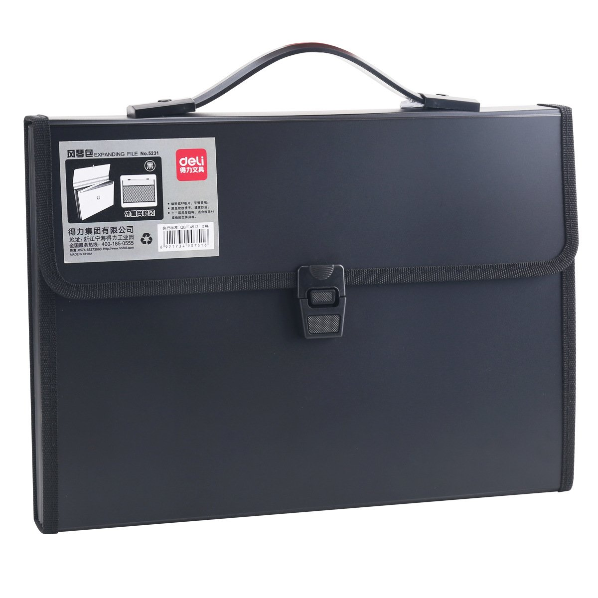 LI-GELISI Accordion Expanding File Folder,13-Pockets,A4 Size,Handle and Tabs,Buckle Closure (Black)