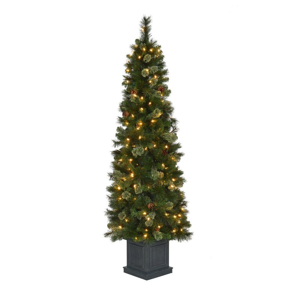 Amazon.com: Christmas Tree 6.5 ft. Hayden Pine Potted Artificial ...
