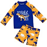 AMIYAN 2-Piece Boys Dinosaur Swimsuit Set Long Sleeve Shirt + Trunks Toddler Cartoon Swimming Suit Kids Rash Guards Bathing Suits