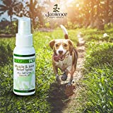 JADIENCE Dog, Cat, Horse Sore Muscle Pain Relief