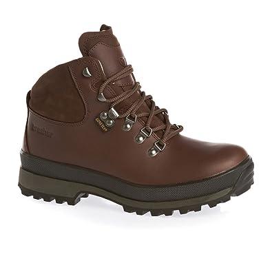 hillmaster ii gtx walking boots