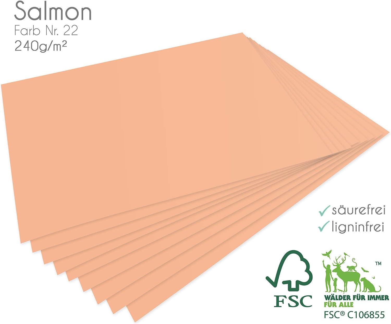Faltkarten.com - Papel para Manualidades (25 Hojas, 240 g/m², DIN A4, en salmón): Amazon.es: Juguetes y juegos