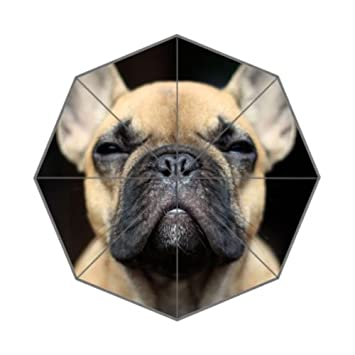 Enne Bulldog Francés paraguas plegable paraguas lluvia paraguas de viaje compacto protección UV
