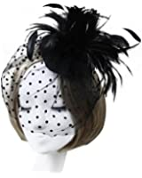 Zad Women's Feather & Mesh Fascinator Hair Clip Cocktail Party Hat