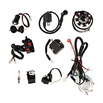 Annpee Complete Electrics Wiring Harness D8EA Spark Plug CDI Ignition Coil Kits for Chinese Dirt Bike 150cc 200cc 250cc Zongshen Loncin