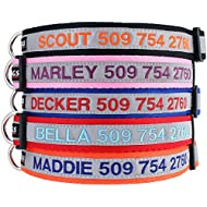 Reflective Personalized Dog Collar, Custom Embroidered w/Pet Name & Phone - Blue, Black, Pink, Red & Orange Collars for Boy & Girl Dogs; 3 Adjustable Sizes: Small, Medium, Large. Highly Reflective.
