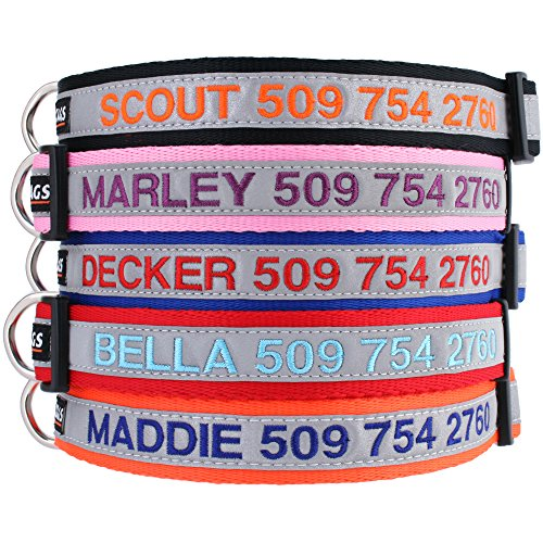 GoTags Reflective Personalized Dog Collar, Custom...