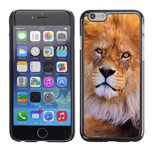 "Premio Sottile Slim Cassa Custodia Case Cover Shell // V00003573 lion au zoo // Apple iPhone 6 6S 6G PLUS 5.5"""
