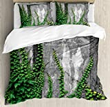 Mystic House Decor Duvet Cover Set Queen Size by Ambesonne, Ivy on Wall with Aged Antique Empty Picture Frame as Window Creative Art, Decorative 3 Piece Bedding Set with 2 Pillow Shams, Green Charcoal