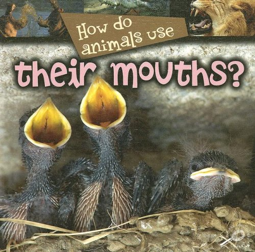 Read Online How Do Animals Use Their Mouths? PDF
