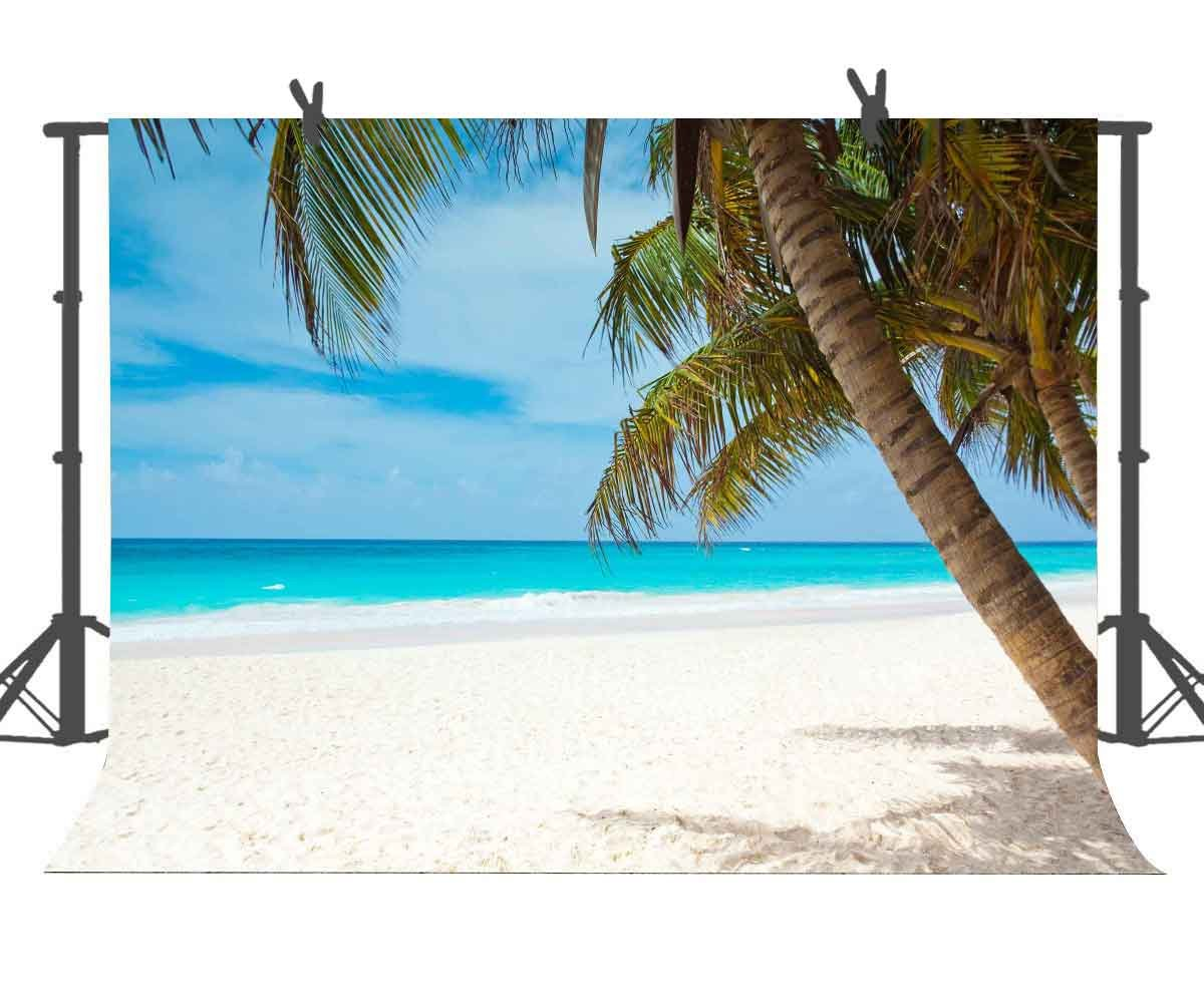10X7ft Tropical Beach Landscape Photography Backdrop Blue Sky Coconut Tree Background for Holiday Outdoor Newborns Photo Booth Props CEA482