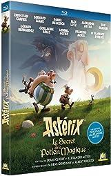 Astérix - Le Secret de la Potion Magique BLURAY 1080p FRENCH