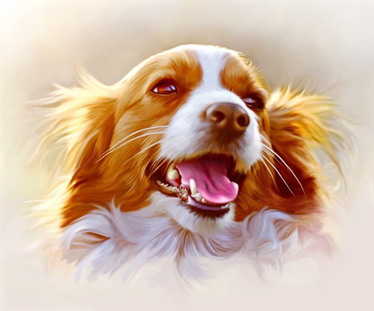 Hand Painted Portrait Painting Photo to Painting /… Custom Portrait Dog Painting Individual Oil Painting
