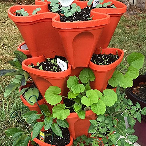 LARGE Vertical Gardening Stackable Planters By Mr. Stacky