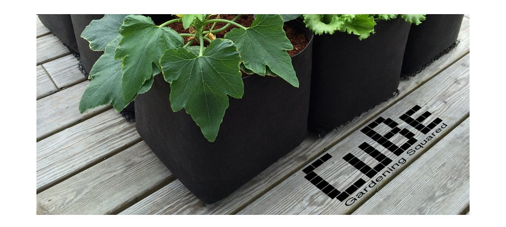 Victory 8 CuBe Garden Square (Pack of 12) 1 Foot X 1 Foot Modular Fabric Pot ''Ultimate Square Foot Garden'' Container with EZ-LIFT TABs