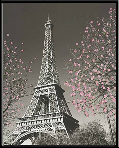 Culturenik Paris Eiffel Tower Blossoms Decorative Photography Travel City Poster Print (8 x 10 Mylar Framed Desktop Print) ()