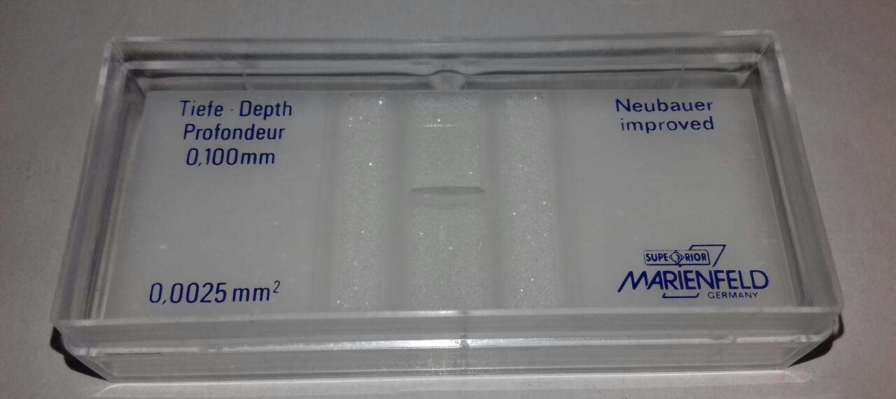 Cell Counting Chamber Improved Neubauer Hemacytometer Marinfield by Marinfield (Image #3)