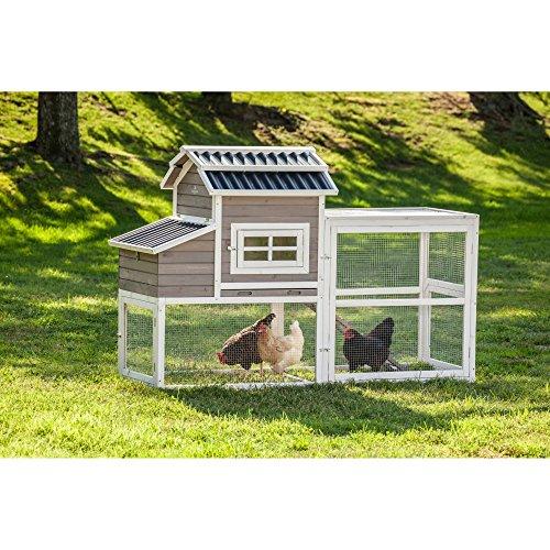 SummerHawk-Ranch-Urban-Slate-Barn-Chicken-Coop