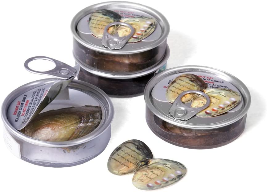 Set of 10 Oysters with Pearl in Can Party Favors
