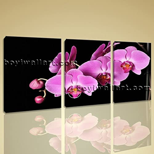Amazon.com: Large Orchid Flower Floral Modern Wall Art Print Living ...