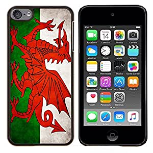 TECHCASE---Cubierta de la caja de protección para la piel dura ** Apple iPod Touch 6 6th Touch6 ** --Nacional bandera de la nación País de Gales