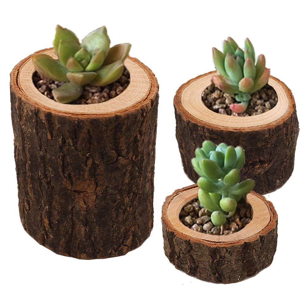 Healifty Bougie 3/pcs Ensemble de support en bois /écorce Bougeoir support de stylo de pot de fleurs