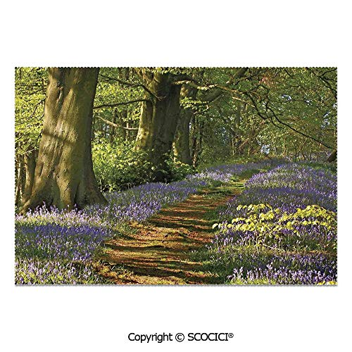 SCOCICI Set of 6 Printed Dinner Placemats Washable Fabric Placemats A Carpet of Bluebells Spreads Through The Woodland in Staffordshire England for Dining Room Kitchen Table Decoration
