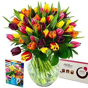 Clare Florist Mixed Tulips Fresh Flower Bouquet Gift Set - Generous on florist books, florist bowls, florist centerpieces, florist containers, florist tools,