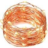 String Lights, Oak Leaf 2 Set of Micro 30 LEDs Super Bright Warm White Color Wire Rope Lights Battery Operated...