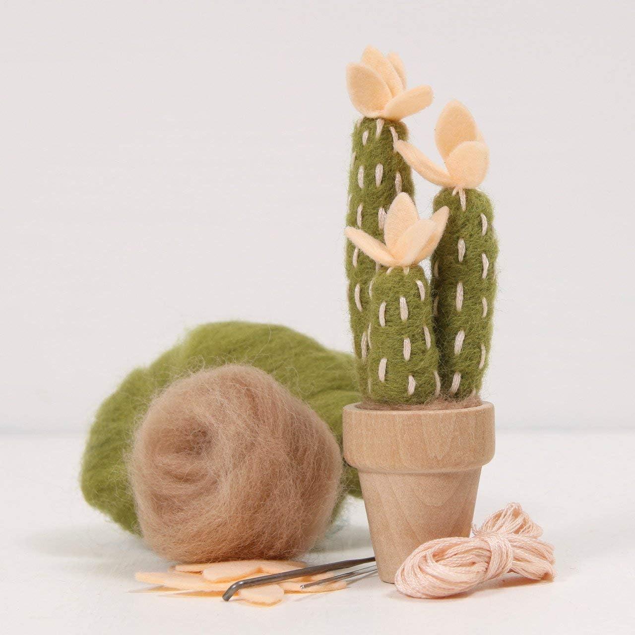 Peach Mojave Needle Felting Cactus Kit