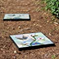 12 in. x 12 in. Outdoor Essentials Hummingbird Stepping Stone, Weather Resistant, Easy Installation, Garden Path