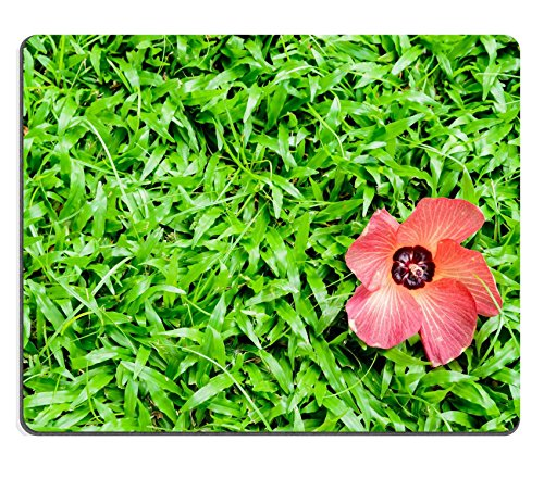 msd-mouse-pad-natural-rubber-mousepad-image-id-34977053-beautiful-background-green-grass-and-red-flo