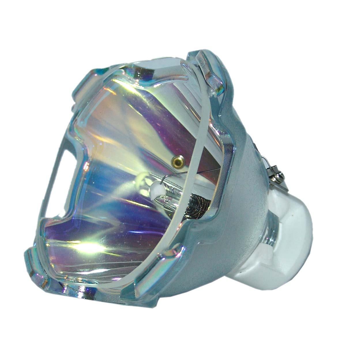 Lutema 交換用ランプ ハウジング/電球付き スタジオ体験用 POA-LMP28 Economy B07KTLK8HK Lamp Only Economy