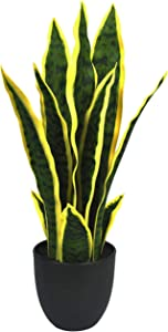 """Artificial Plants Sansevieria Snake Mini Plant with Black Plastic Planter Greenery Perfect Faux Agave Fake Plants in Pot for Home Office Indoor and Outdoo Décor (16"""" / 12 Leaves)"""