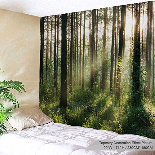 Used, PROCIDA Home Wall Hanging Nature Art Polyester Fabric for sale  Delivered anywhere in USA