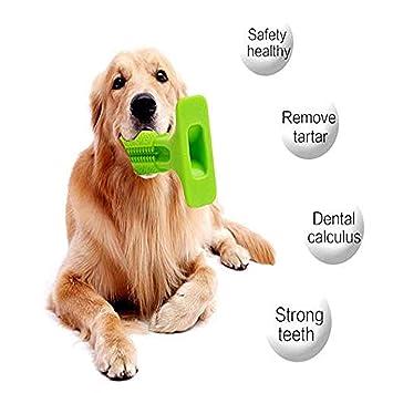 AMAES Cepillo de Dientes del Perro, Palo de Goma Suave Cepillado con Cepillo para Perros, Mascotas, Cuidado Oral, Perrito Limpieza de Dientes (Gran): ...